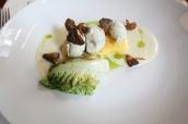 Kuřecí knedlíčky, artyčokové velouté, houby shitake, krémová polenta (Chicken dumplings , artichoke velouté , shitake mushrooms , creamy polenta)