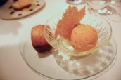 Mango sorbet with pineapple financier and coconut tuile