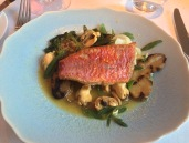 Red mullet with mussel and saffron broth, sea purslane, roast baby gem and pink fir potato