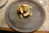 Celeriac, pear, fermented mushrooms & hazelnut