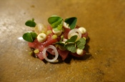 Aged veal in coal oil, shallot, wood sorrel