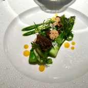 Jérôme Galis asparagus, wild garlic, confit egg yolk, morels